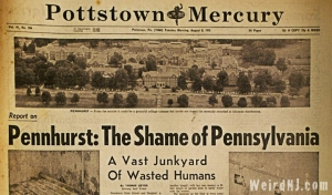 Pennhurst, a state-funded Pennsylvania facility for the mentally deficient, was one of the most shameful examples of the neglect and mistreatment that was common at these institutions. It was the site of Werner Henle's research in the 1940s to develop an influenza vaccine.